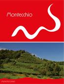 Guida Montecchio